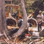 Jim Rudd and his skidder removing fallen trees.